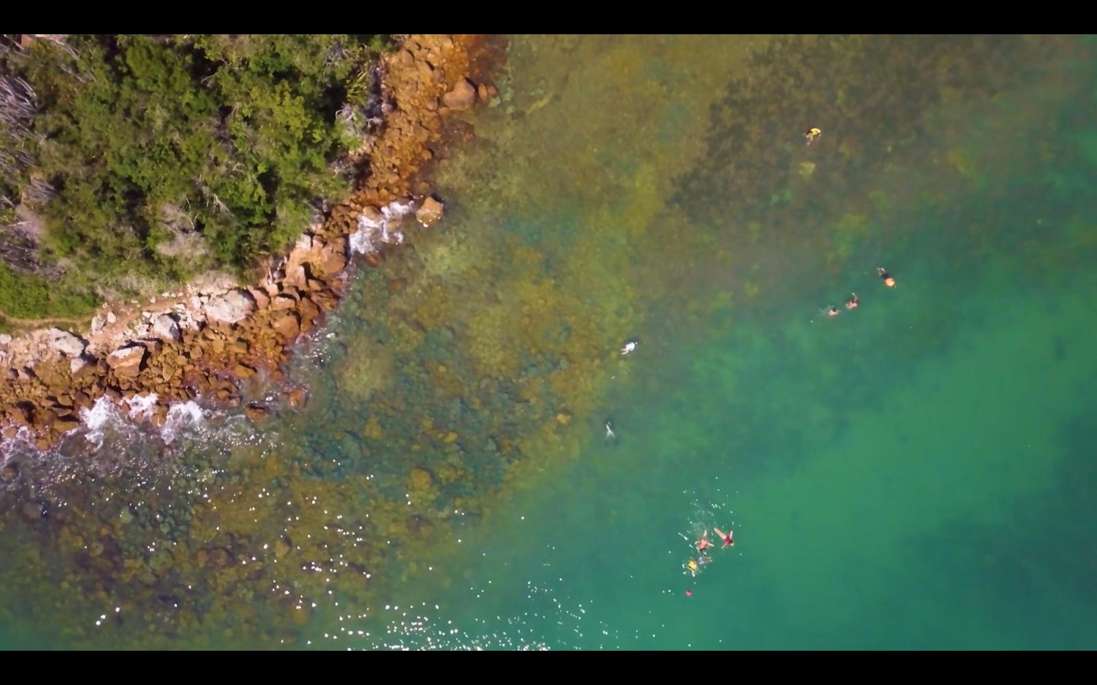 Teaser Documentário Ecorais